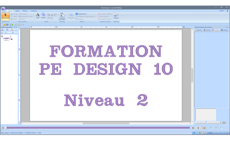 Formation PE DESIGN 10 Niveau 2