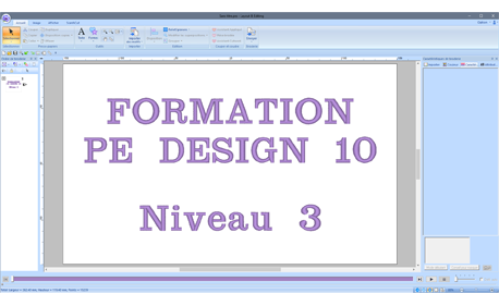 Formation PE DESIGN 10 Niveau 3